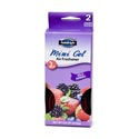 Air Freshener 2pk Wild Berries Mini Gel Boxed Auto Bright