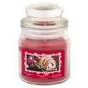 Candle Scented Apothecary Jar Cinnamon Spice 3 Oz