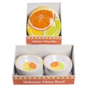 Dinnerware Melamine Plate/bowl 48pc Pdq's Ea Citrus Design 7.25in Bowl/11in Plate Upc Label