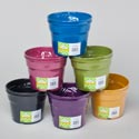 Planter Bamboo Fibers 2pk 5x3.9 Biodegradable 6 Random Colors Shrink W/upc Label
