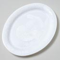 Turkey Platter White Plastic W/ Embossed Bird In Center & Decor Rim 19x14-7/8 Upc Label