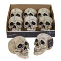 Skull Head Plastic Deluxe W/ Movable Mouth 120g 2x6pc Pdq Halloween Ht Lifesize