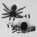 Spider 8in W/elastic Band Bristly/2ast Spider Styles Hall Ht